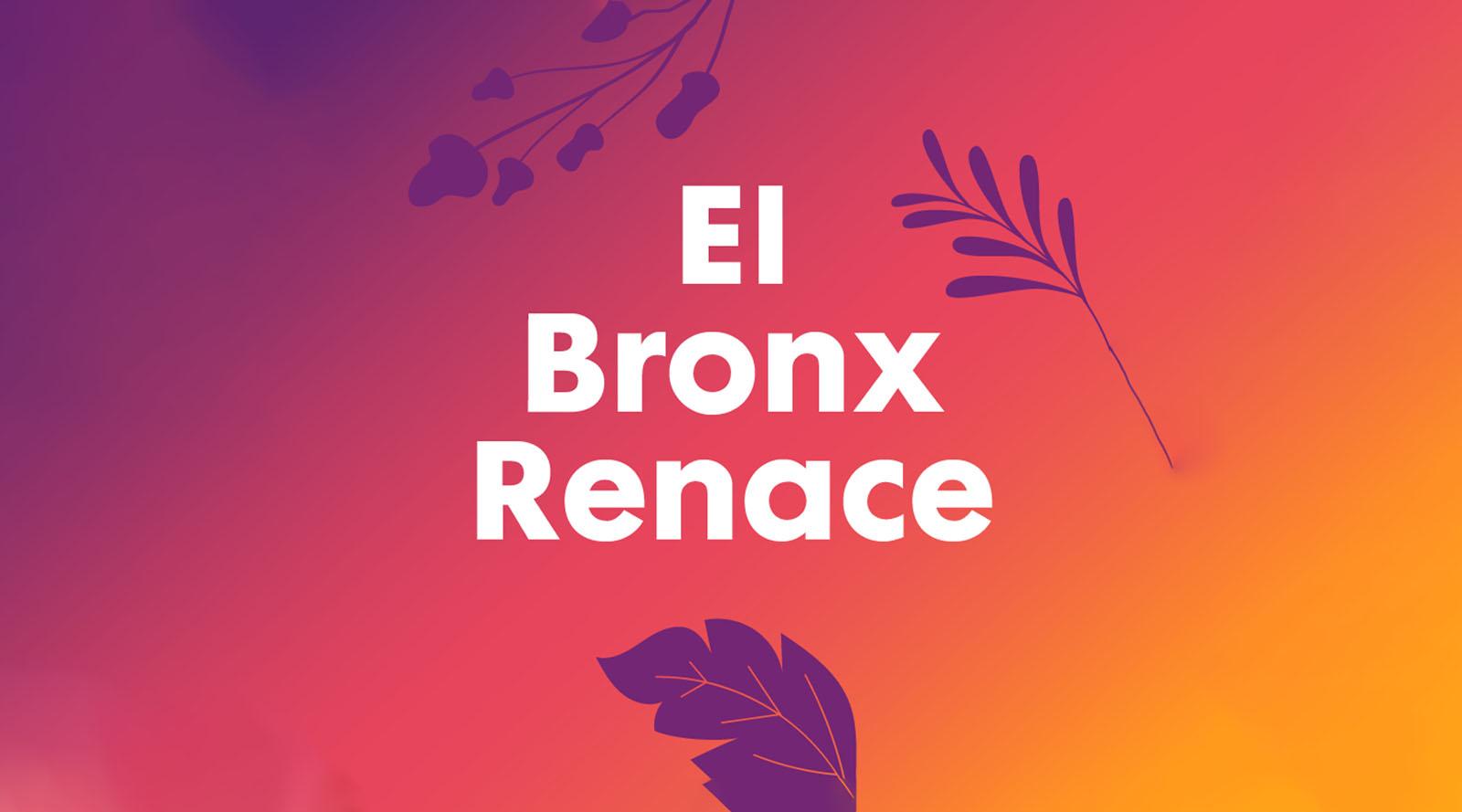 El Bronx Renace – Columna de Margarita Díaz Casas